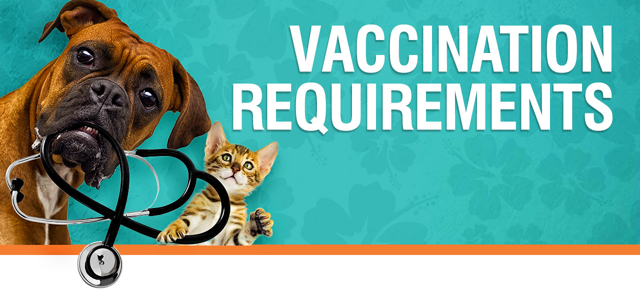 vaccination-requirements