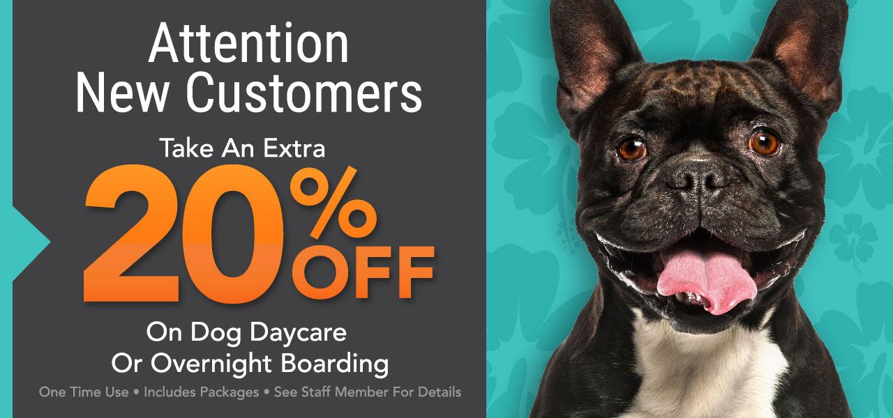 Resort Requirements - Luxe Pet Resort