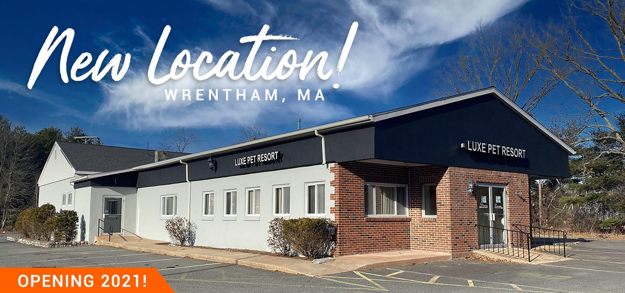 New Luxe Location - Wrentham, MA